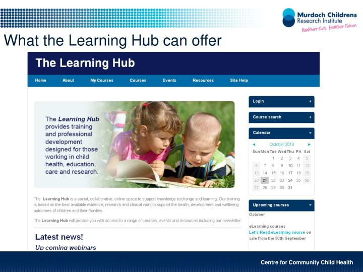 What the Learning Hub can offer