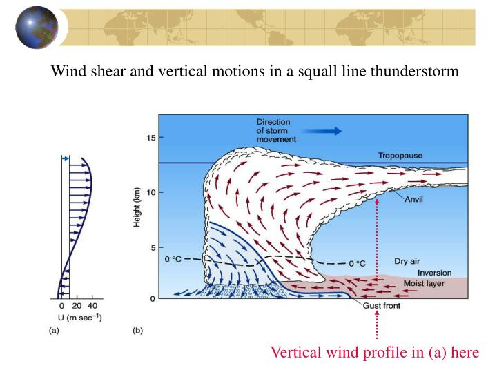 Wind shear and vertical motions in a squall line thunderstorm
