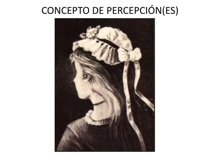 CONCEPTO DE PERCEPCIÓN(ES)