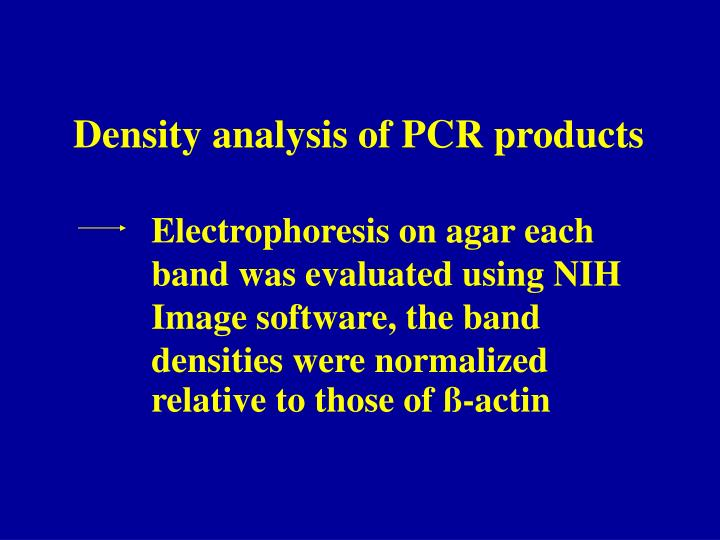 Density analysis of PCR products