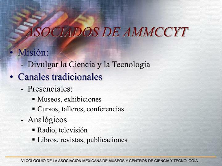 ASOCIADOS DE AMMCCYT