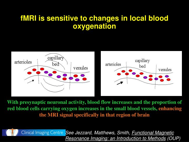 fMRI is sensitive to changes in local blood oxygenation