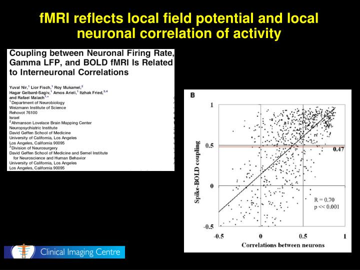 fMRI reflects local field potential and local neuronal correlation of activity