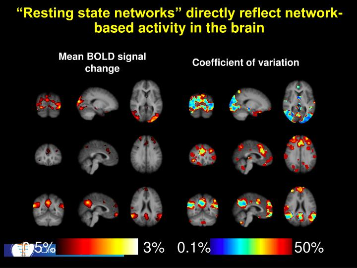 """Resting state networks"" directly reflect network-based activity in the brain"