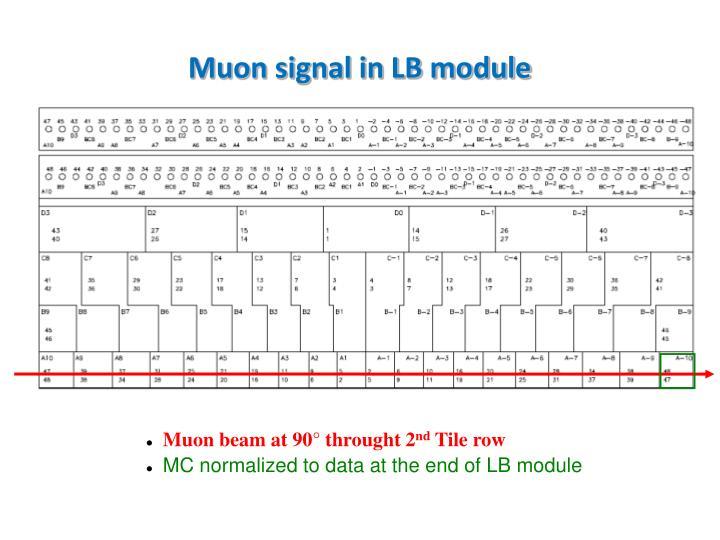 Muon signal in LB module