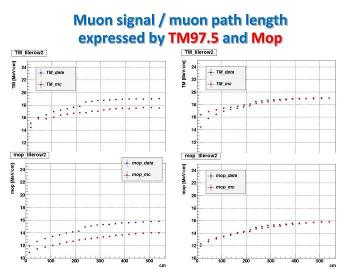 Muon signal / muon path length