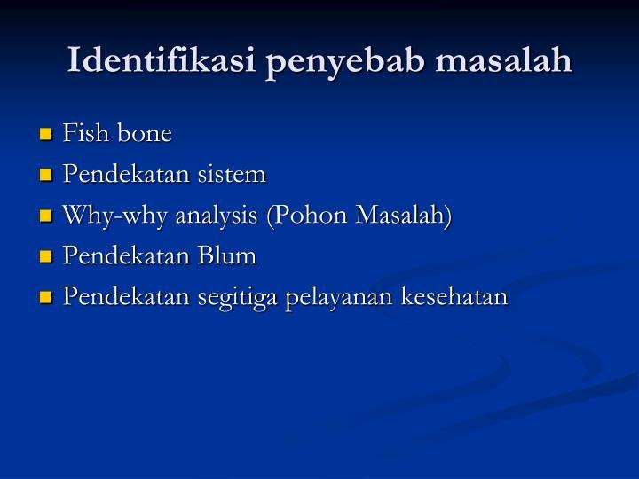 Identifikasi penyebab masalah