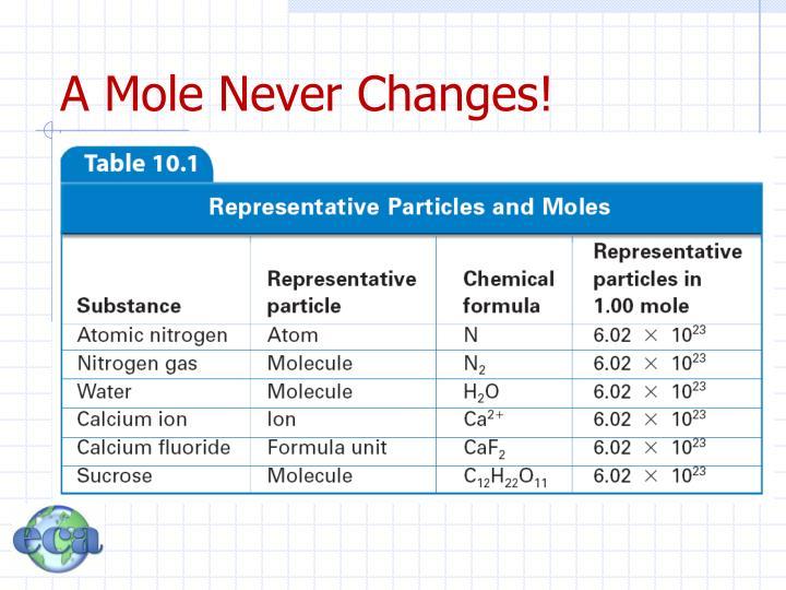 A Mole Never Changes!