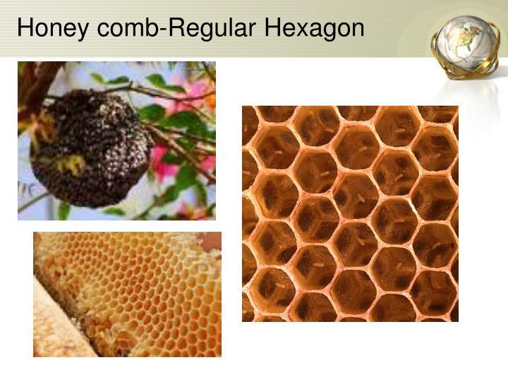 Honey comb-Regular Hexagon