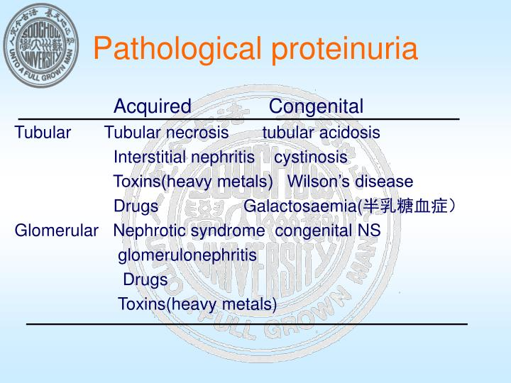 Pathological proteinuria