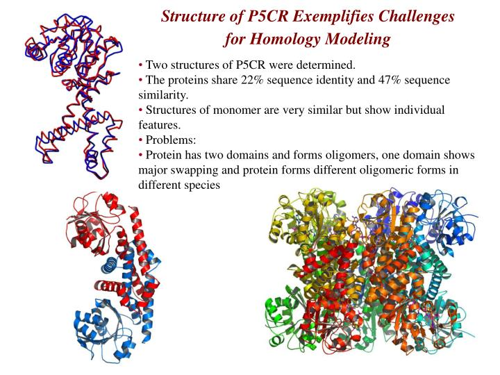 Structure of P5CR Exemplifies Challenges