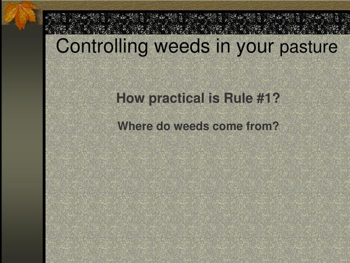Controlling weeds in your