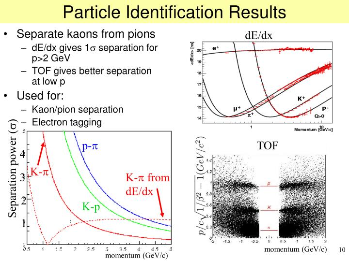 Particle Identification Results