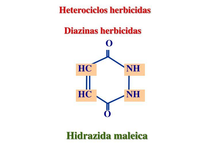 Heterociclos herbicidas