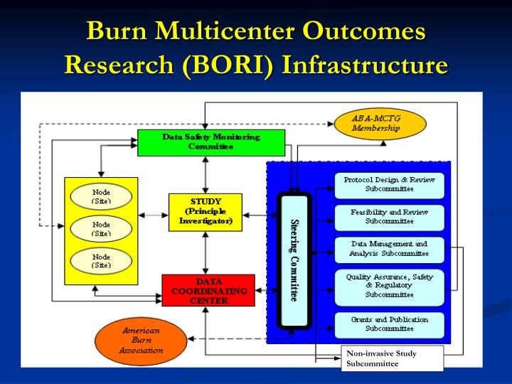 Burn Multicenter Outcomes Research (BORI) Infrastructure