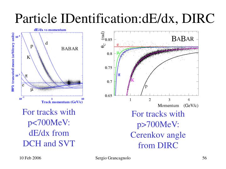 Particle IDentification:dE/dx, DIRC