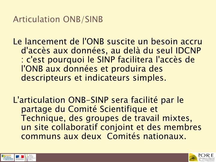 Articulation ONB/SINB