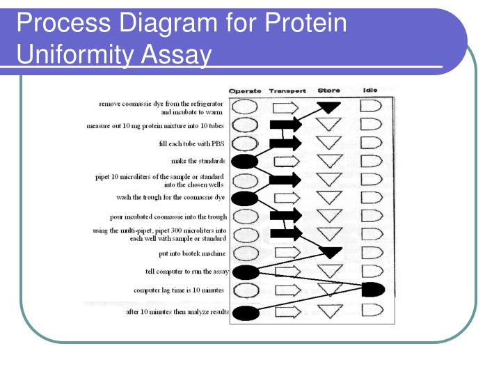 Process Diagram for Protein Uniformity Assay