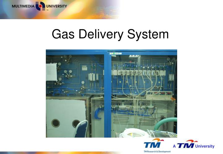 Gas Delivery System