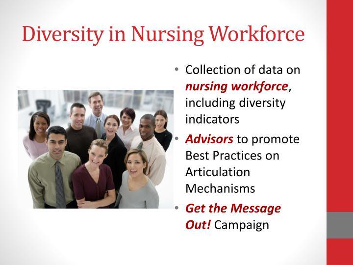 Diversity in Nursing Workforce