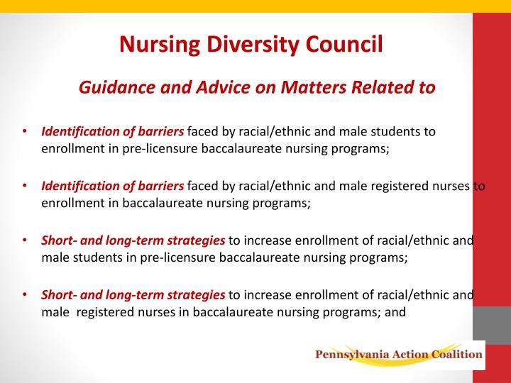Nursing Diversity Council