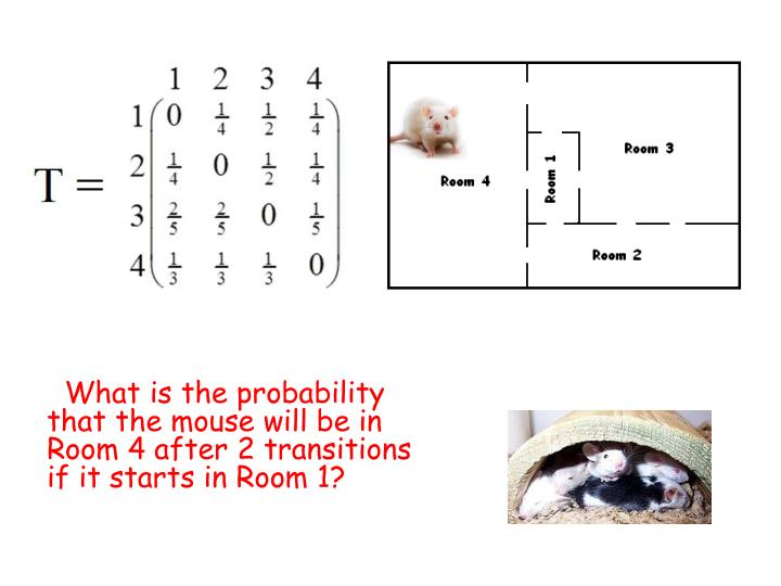 What is the probability that the mouse will be in Room 4 after 2 transitions if it starts in Room 1?