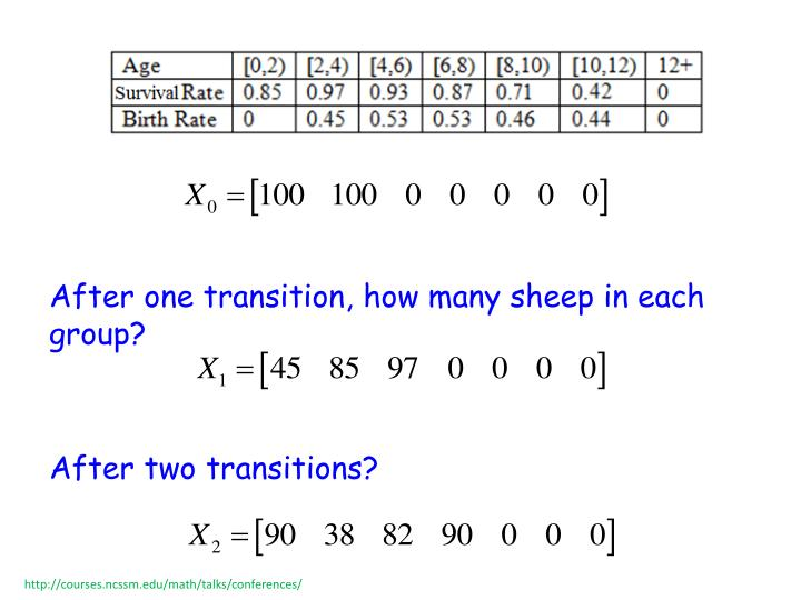 After one transition, how many sheep in each group?