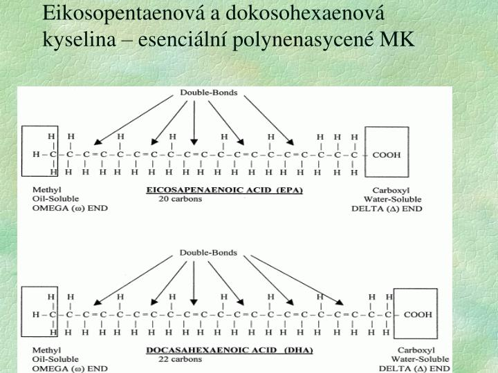 Eikosopentaenová a dokosohexaenová kyselina – esenciální polynenasycené MK