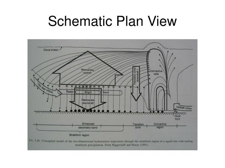 Schematic Plan View