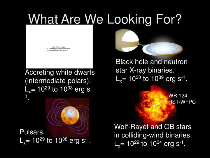 What Are We Looking For?