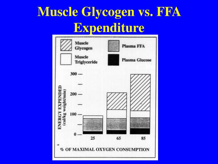 Muscle Glycogen vs. FFA Expenditure