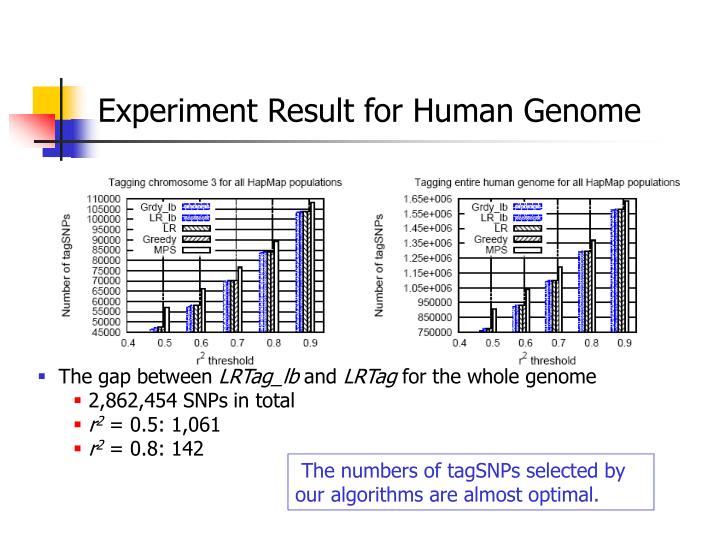 Experiment Result for Human Genome