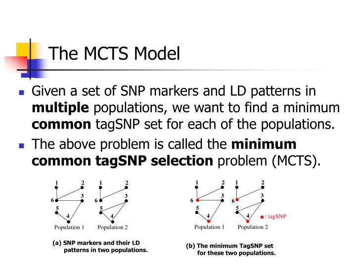 (a) SNP markers and their LD patterns in two populations.