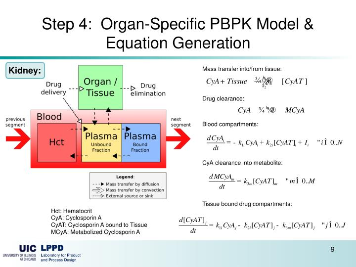 Step 4:  Organ-Specific PBPK Model & Equation Generation