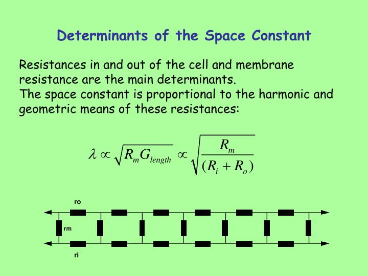 Determinants of the Space Constant