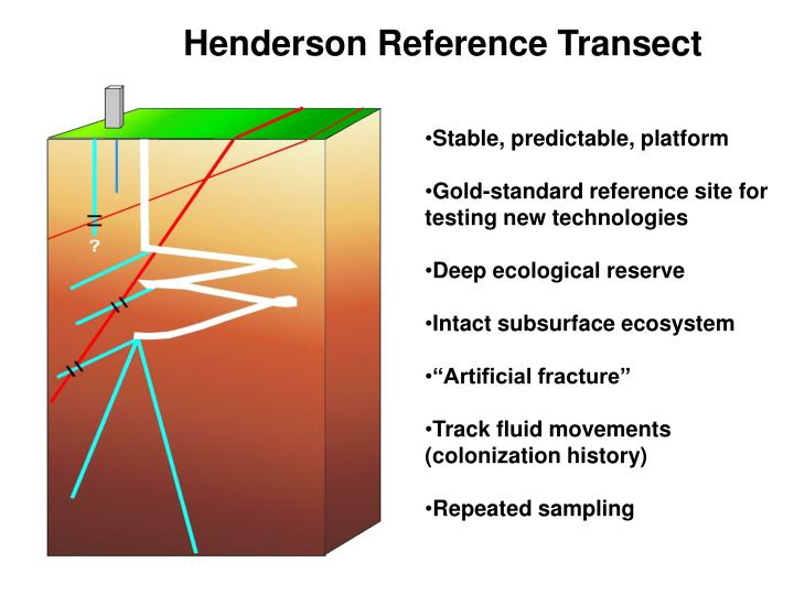 Henderson Reference Transect