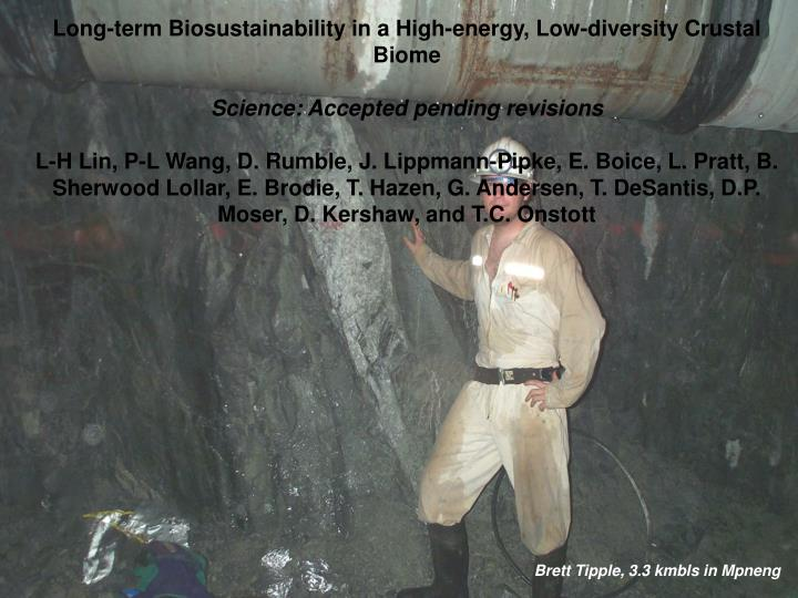 Long-term Biosustainability in a High-energy, Low-diversity Crustal Biome