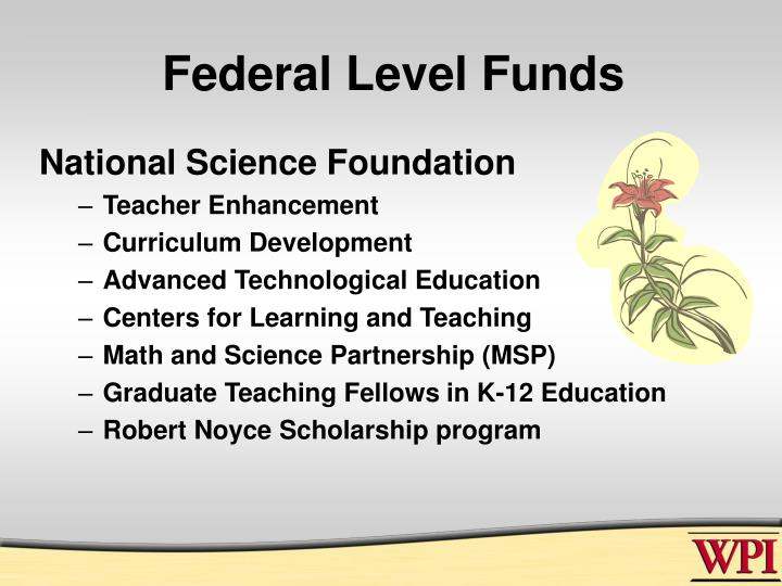 Federal Level Funds