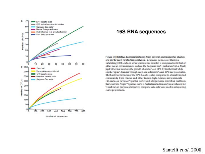 16S RNA sequences