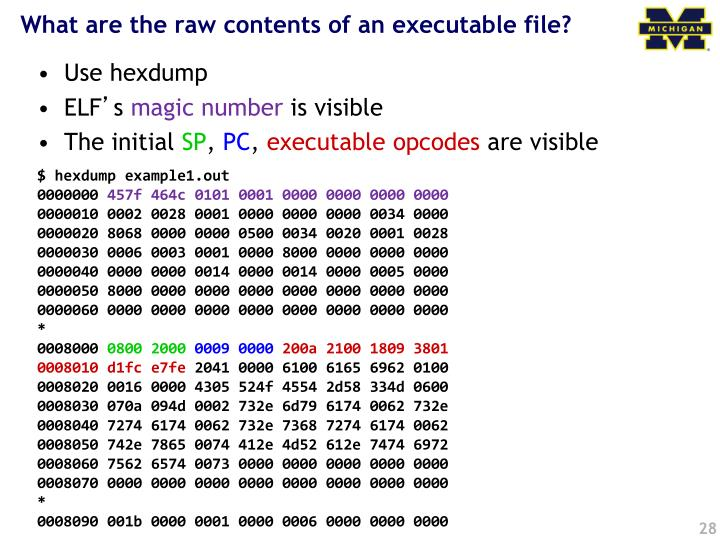 What are the raw contents of an executable file?