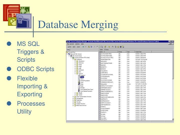 Database Merging