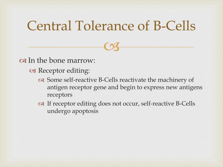 Central Tolerance of B-Cells