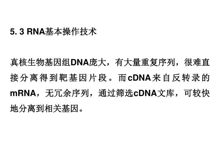 5. 3 RNA