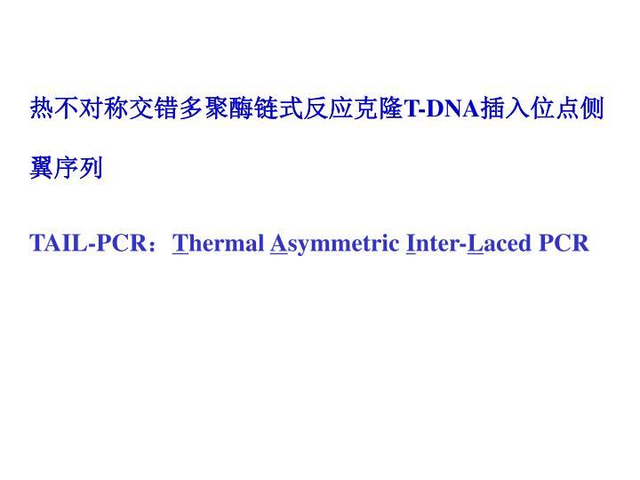 热不对称交错多聚酶链式反应克隆