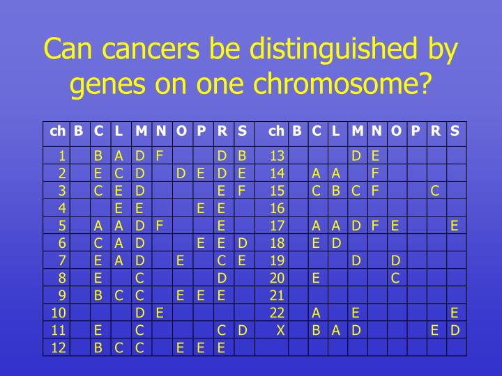Can cancers be distinguished by genes on one chromosome?