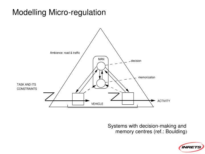 Modelling Micro-regulation