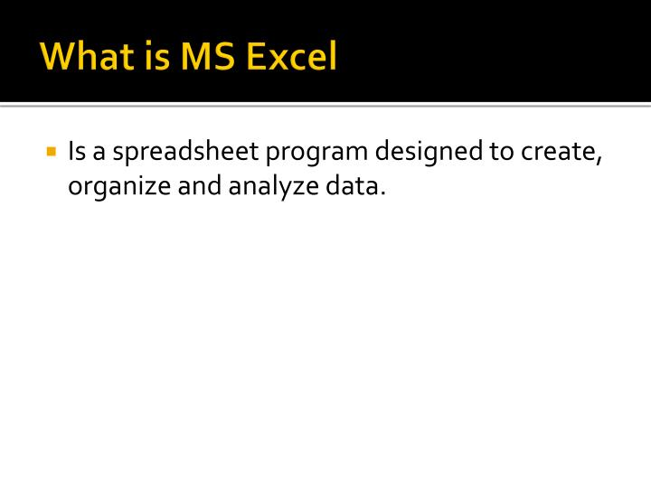What is MS Excel