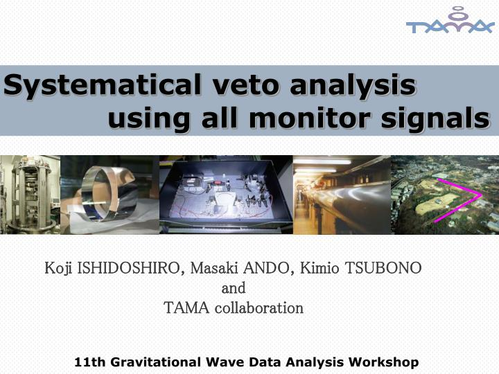 Systematical veto analysis