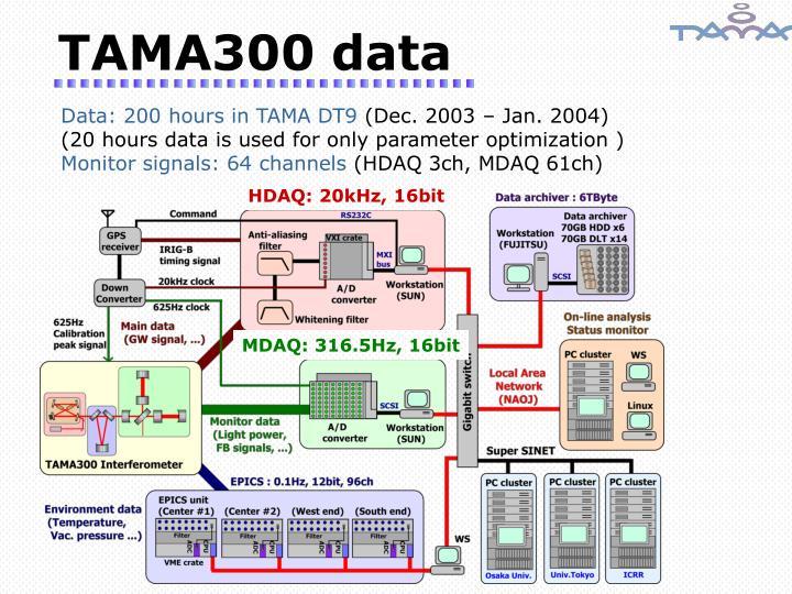 TAMA300 data