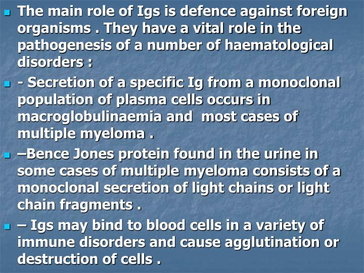 The main role of Igs is defence against foreign organisms . They have a vital role in the pathogenesis of a number of haematological disorders :